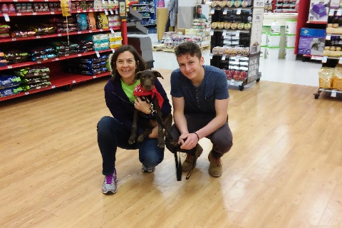 Darbey   Recently Adopted Pets