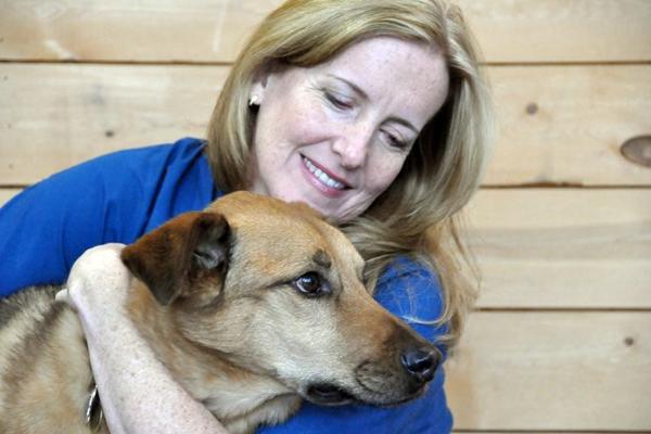 Dr Barbara Royal Dog Food Recommendations