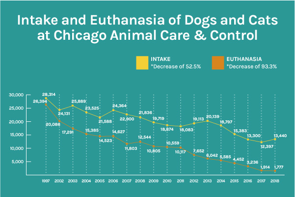 Animal Care & Control Results | PAWS Chicago